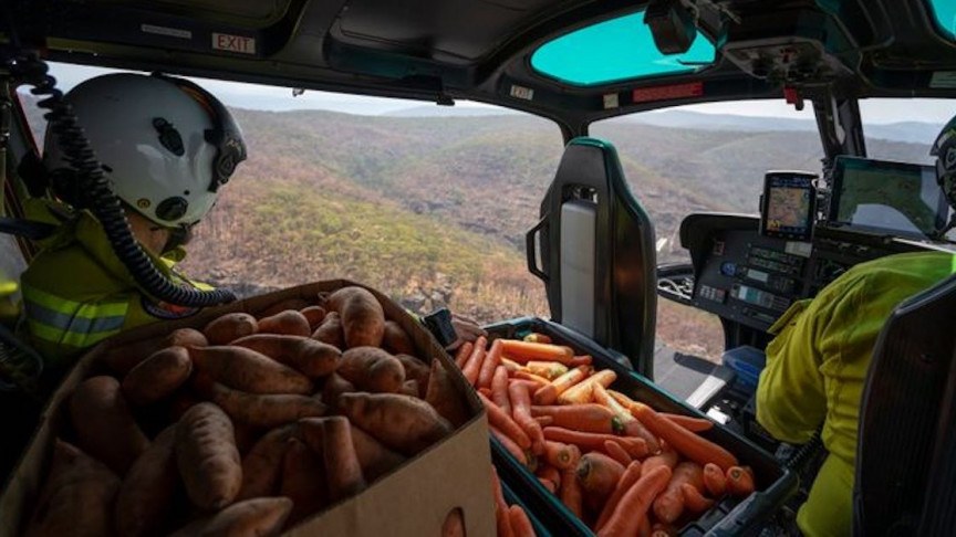 Over 4,000 Pound Food Drop in Australia